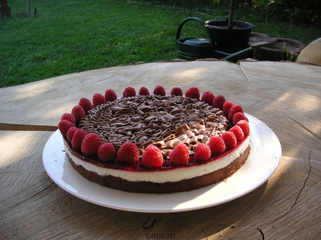 Himbeer-Schoko-Torte_PICT_6282