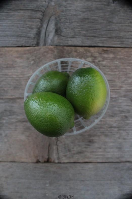 Sommerdrink Wassermelone_IMG_2379